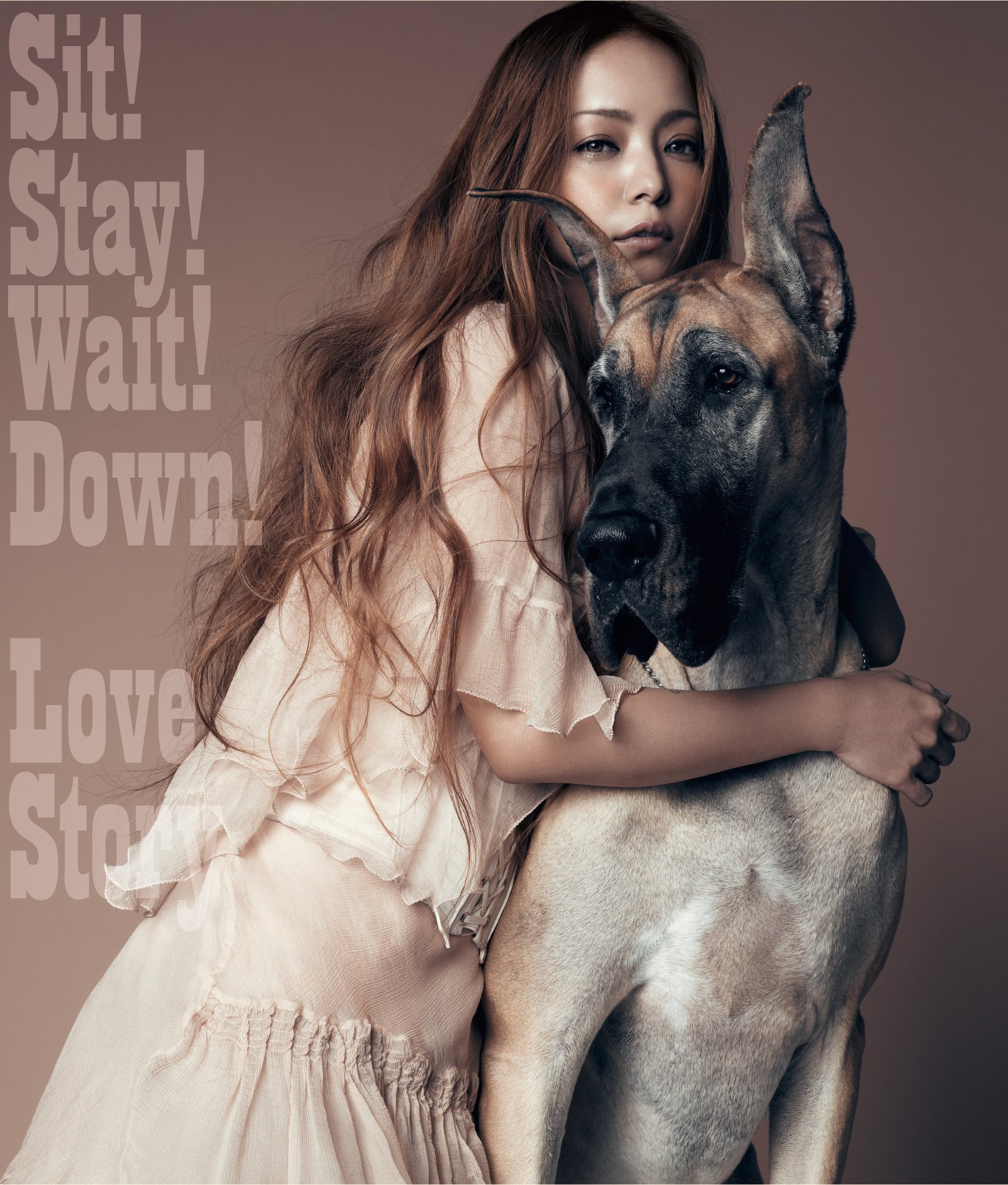 "Capa do single ""Sit! Stay! Wait! Down!/Love Story"" – CD Only Edition"
